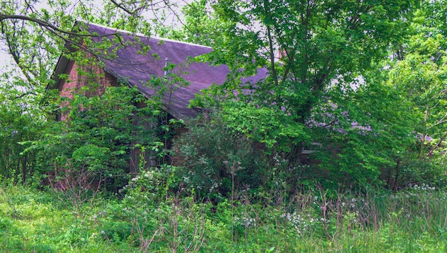 10 bonnes raisons de renoncer à vous battre : jardin abandonné avec table et banc.