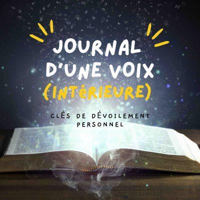 Visuel du podcast Journal d'une Petite Voix